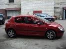 Peugeot 307_1